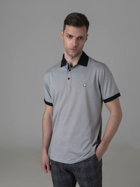 Picture of Striped men's polo shirt