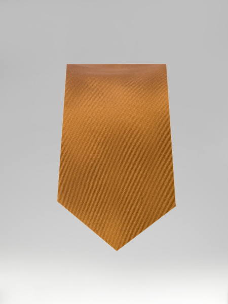 Picture of CAMEL TIE