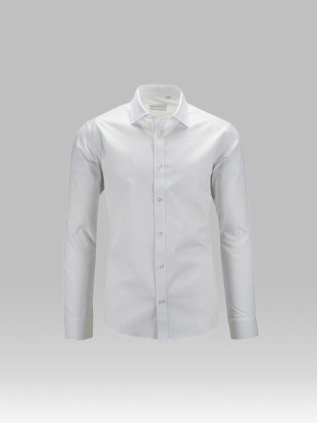 Picture of Cotton shirt, semi cutaway collar